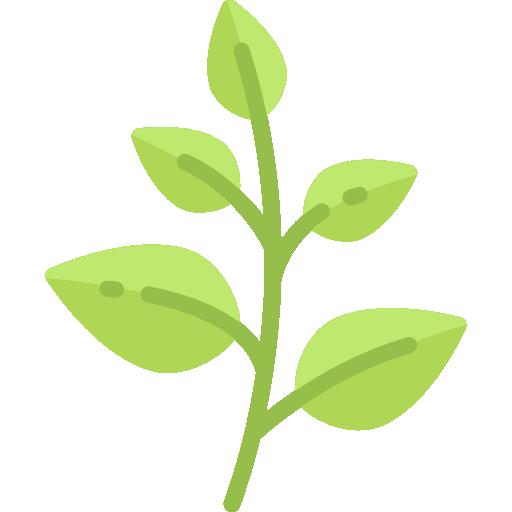Produits naturels Baumes de marie